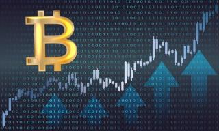 cursuri tranzactionare bursa comparație broker criptomonedă
